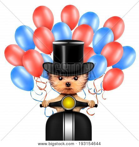 Funny dog with cylinder hat sitting on scooter and surrounded by balloons. Concept of 4th of July and Independence Day, Realistic 3D illustration.