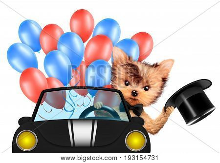 Funny dog with cylinder hat sitting sitting on car and surrounded by balloons. Concept of 4th of July and Independence Day, Realistic 3D illustration.