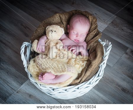 Cute newborn baby girl sleeping in basket