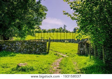 A path passing through a gap in a dry stone wall bordered by trees on a sunny day in Northern england.