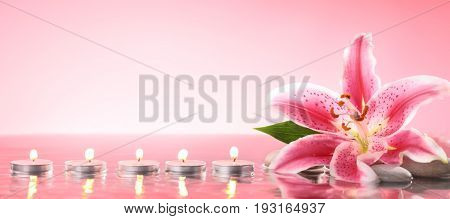 Lily and buring candles on pink background
