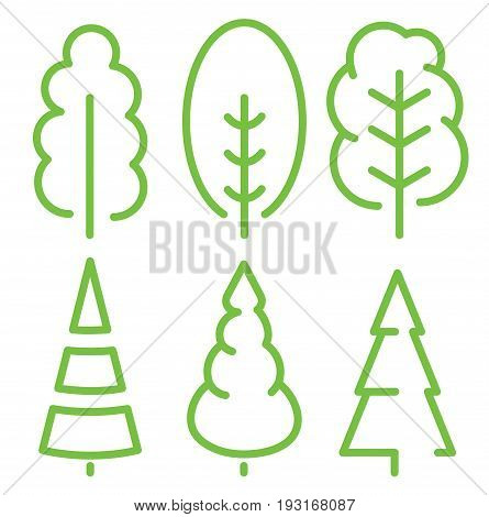 Isolated green color old tall trees illustrations. Lineart style vector forest icon and logo set. Park and garden flat signs collection