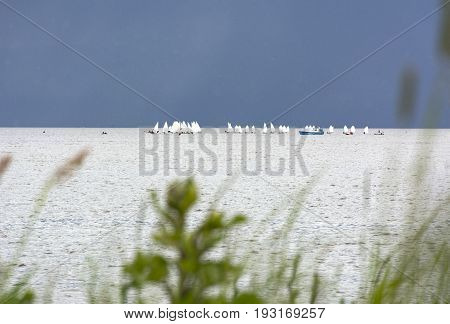 coast boats with white sails in the sea on the horizon sailboats Gulf of Finland