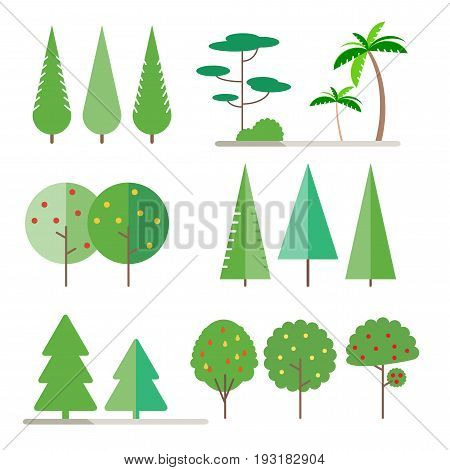 Set trees in flat style - spruce, fir-tree, pine, apple, pear, Palm tree. Bush. Vector illustration