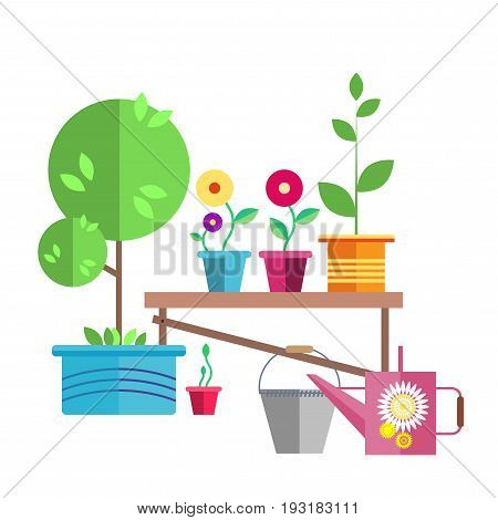 Garden. A young tree in a blue pot. A garden watering can and an iron bucket. Flowers and a seedling in a pot are on the bench.Illustration in the style of flat