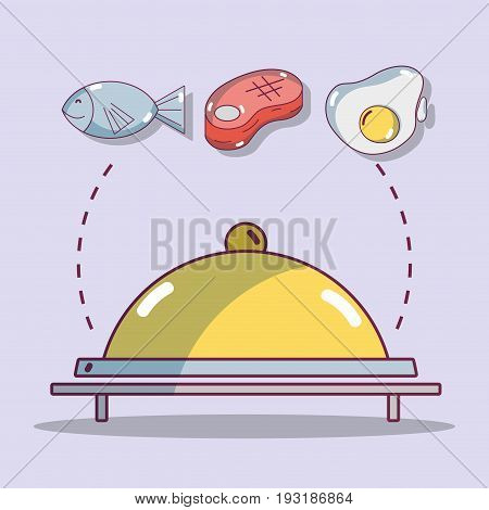 catering with fish and meat and egg protein food vector illustration