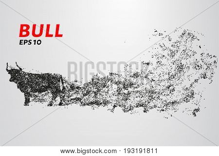 Bull Of Particles. The Bull Consists Of Circles And Points. Vector Illustration.