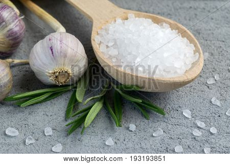 Fresh garlic bulbs rosemary and wooden spoon with sea salt on grey concrete background.