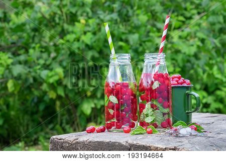 Cold drinks with straw - cranberries summer refreshing cocktail in garden outside.