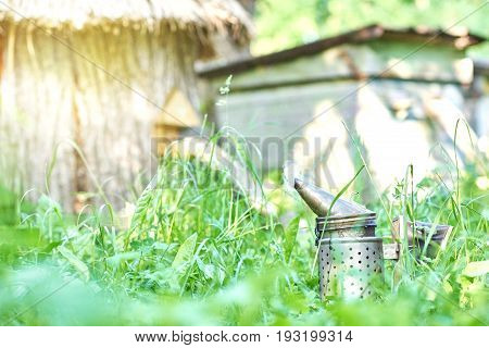 Bee smoker on the grass in apiary garden copyspace nature natural peaceful beekeeping equipment technology working honeycraft concept.