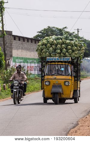 Mysore India - October 27 2013: In Ranganathapur on rural road rides a yellow three-wheeled APE truck overloaded with heap of harvested cauliflowers. Driver and kid visible. Motorbike overtakes.