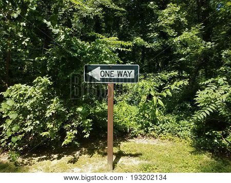 one way sign on wood post with forest in the background
