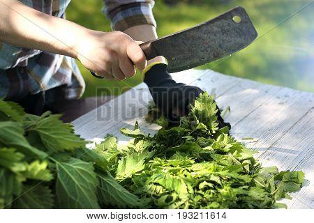 Green nettle in the kitchen. Woman chopping nettle leaves.