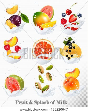 Big collection icons of fruit in a milk splash. Guava plum mango blackcurrant strawberry cherry blueberry honey melon peach. Vector Set
