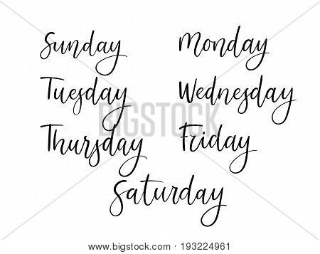 Handwritten Days Of Week. Modern Calligraphy Calendar. Isolated On White