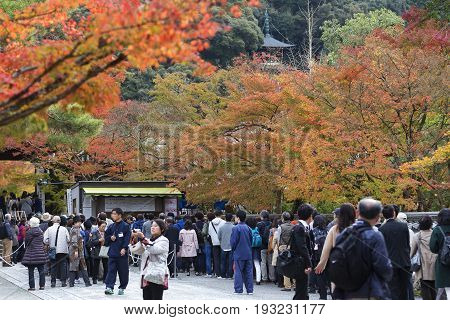 KYOTO JAPAN - 20 NOVEMBER 2015: Visitors from most countries in the queue to buy ticket to watch the leaves change color in the Eikando Zenrin-ji temple.The temple very famous for its autumn colors