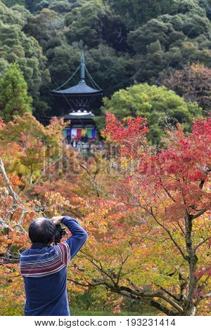 KYOTO JAPAN - 20 NOVEMBER 2015: Tourists are taking pictures pagoda against autumn foliage in Eikan-do Zenrinji temple in Kyoto Japan. This place is very famous for its autumn colors foliage