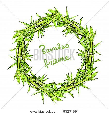 hand drawn illustration with color frame bamboo stalk and leaves. vector eps 8