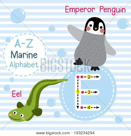 Cute children sea alphabet flashcard of funny marine animal cartoon E letter tracing for kids learning English vocabulary vector illustration.
