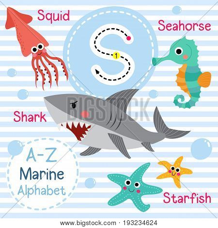 Cute children sea alphabet flashcard of funny marine animal cartoon S letter tracing for kids learning English vocabulary vector illustration.