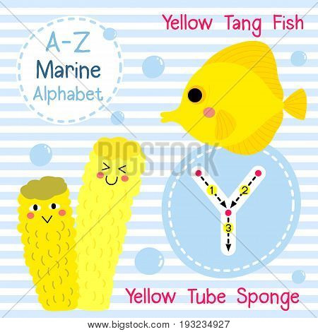 Cute children sea alphabet flashcard of funny marine animal cartoon Y letter tracing for kids learning English vocabulary vector illustration.