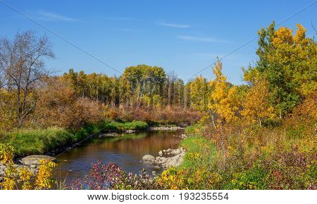 A stream surrounded by a forest of colorful autumn trees in a countryside landscape
