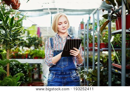 Attractive Blond Girl Taking Care Of Plants