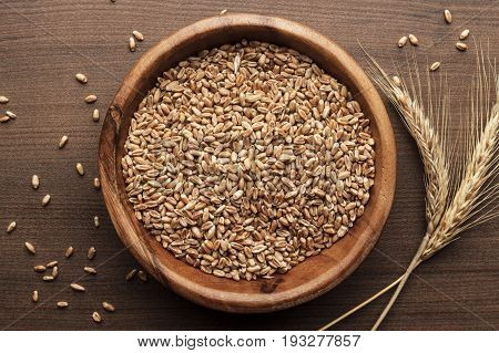 wheat seeds for sprouting. wheat seeds in wooden bowl. sprouting wheat seeds on the brown table. wheat seeds in a bowl on wooden background