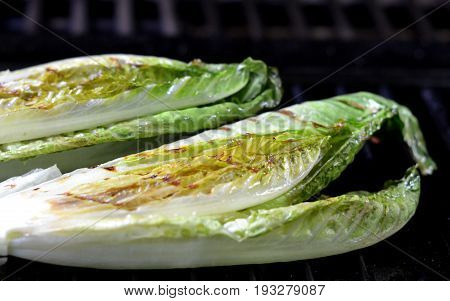 Grilled Romaine Lettuce; Lettuce hearts on the Barbecue.