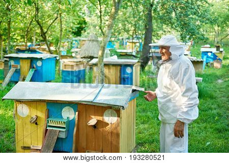 Low angle rearview shot of a beekeeper in beekeeping suit standing at his apiary near row of beehives copyspace.
