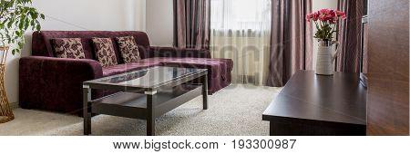 Panorama of purple sofa in living room