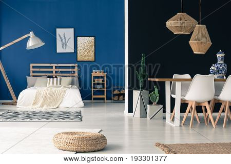 Cozy spacious studio in blue and white