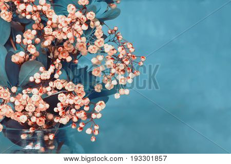 Spring bouquet of blossoming barberry on a blue background. Blurred toned space for copying.