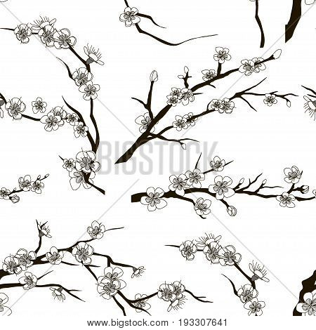 Set of realistic sakura japan cherry branch pattern with blooming flowers. Nature background with blossom branch of pink sakura flowers.