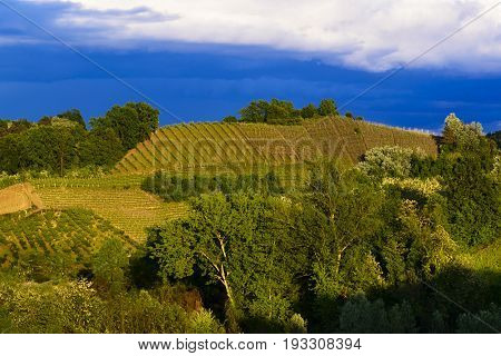 View of the vineyards and hills of Roero Piedmont Italy during a thunderstorm suggestive contrast between dark skies and vineyards illuminated by the afternoon sun