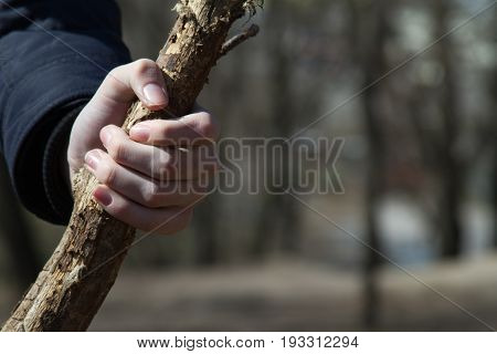 A child's hand tightly squeezes a wooden stick. Selective focus.