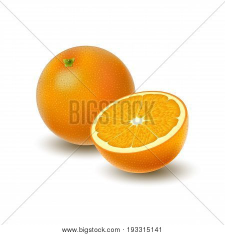 Isolated colored group of orange half and whole juicy fruit with shadow on white background. Realistic citrus