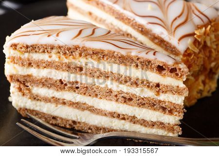 Piece Of The Hungarian Cake Of Esterhazy Is Decorated With A Glaze Macro. Horizontal