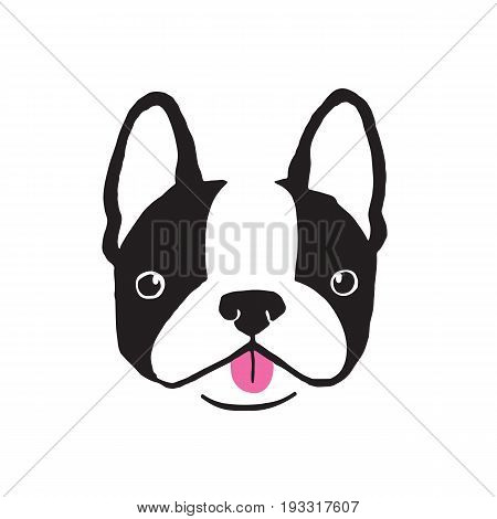 Boston Terrier face. Quirky hand drawn vector Illustration.