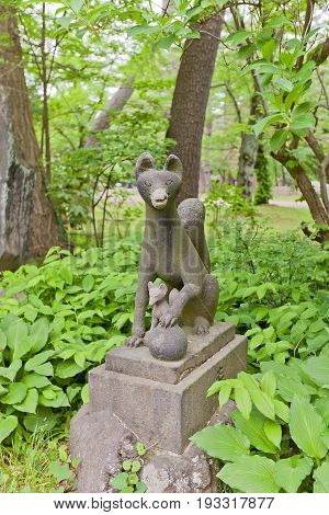 AKITA JAPAN - MAY 26 2017: Statue of kitsune in Hachiman Akita Shinto Shrine on the grounds of Kubota Castle in Akita Japan. Kitsune is a fox shapeshifter and a servant of Inari goddess