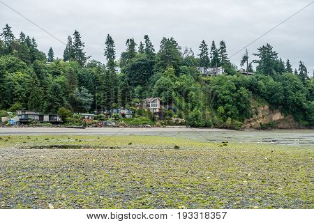 A view of the shoreline at Saltwater State Park in Washington State. It is rainy.