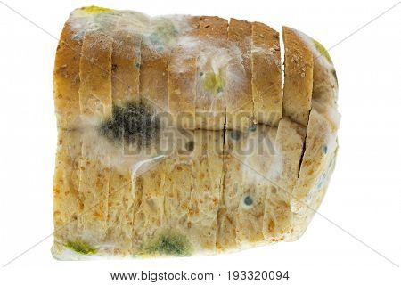 Closeup texture of black yellow blue molds on molded old wholewheat bread isolated on white background