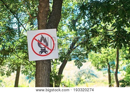 No fire sign in a dry summer forest