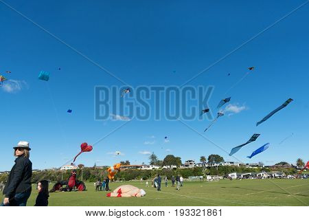 Tauranga, New Zealand - June 4, 2017;  Kite flying day people gather to partake and watch colourful array of flying objects Fergusson Park Tauranga New Zealand.