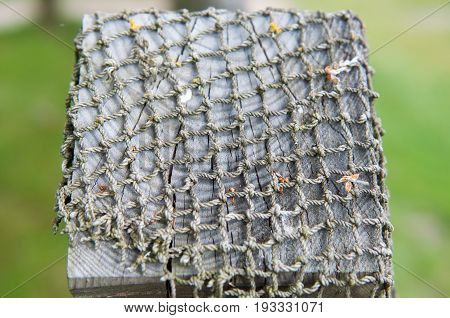 old FishNet on a wood fence for background