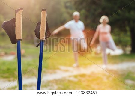 Ready for usage. Selective focus of professional walking poles standing in the grass while being ready for usage