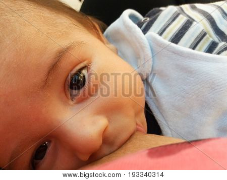 two months old baby boy breastfeeding in public