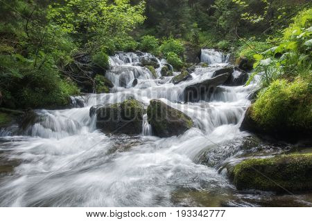 Beauty waterfall on mountain in summer time. Flowing water in the lush forest. Wilderness scene