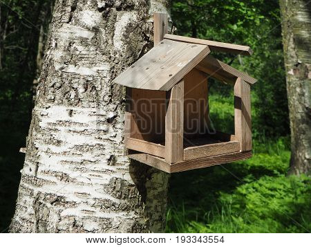 Big wooden bird feeder hanging on the tree in the forest