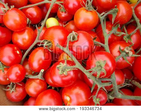 Bunch of Rosy Red Vine Tomatoes at a Farmers Market in San Francisco.